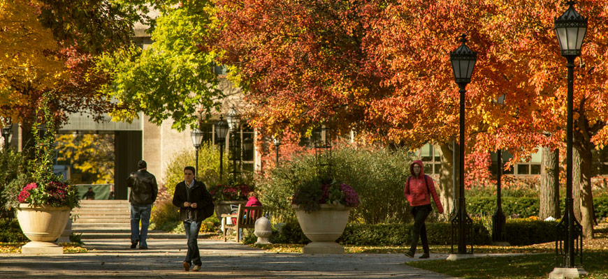 Fall season on University of Chicago campus