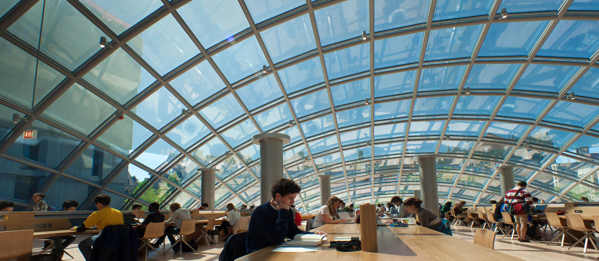 Mansueto Library interior