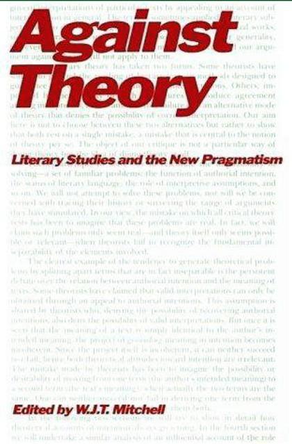 literary theory essays