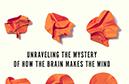 Jerome Braun reviews The Consciousness Instinct