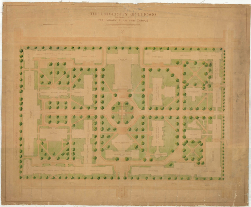University of Chicago master plan drawing by Frederick Law Olmsted's firm in 1902.