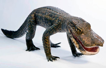 Anatosuchus minor
