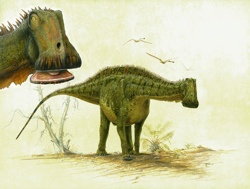 nigersaurus-03.jpg