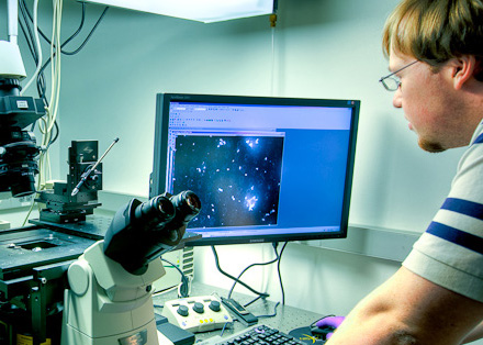 A scientist conducting research