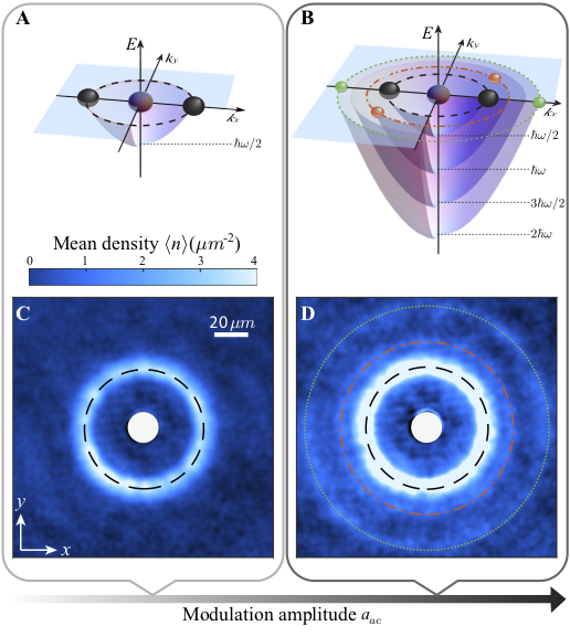 The first and high-harmonic generation of matter-wave jets