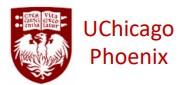 Phoenix Fellow Logo
