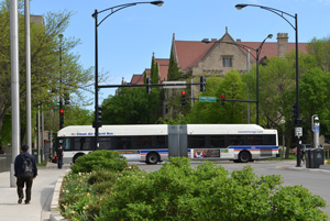 One of the many CTA buses that serves the University of Chicago campus.