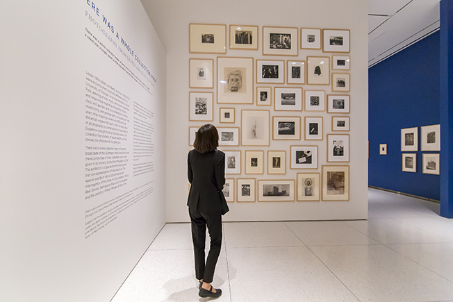 Visitor looking at salon-style wall of photographs