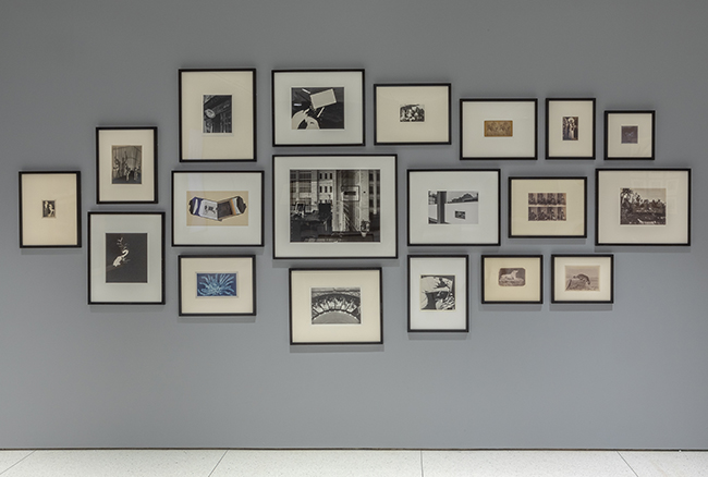 A cluster of 19 framed photographs are hung on a gray wall