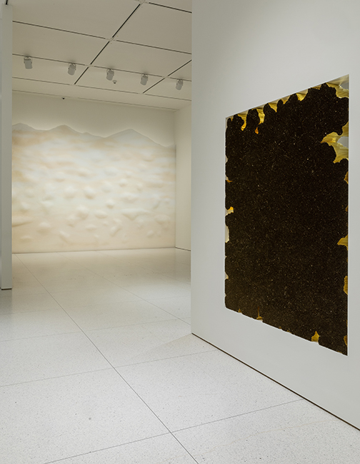Left: Tara Donovan, Haze, 2003/2019, Translucent plasticdrinking straws, Dimensions variable. Right: Tara Donovan, Untitled, 2018, Mylar, tape, and hot glue, 72 x 60 x 5-1/2 inches. Installation view, Tara Donovan: Fieldwork, Smart Museum of Art, 2019. Co