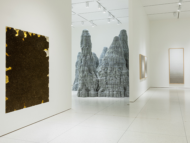 Installation view, Tara Donovan: Fieldwork, Smart Museum of Art, 2019. Courtesy of the artist and Pace Gallery. Photo: Michael Tropea.