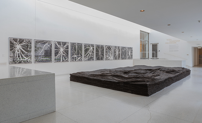 Foreground: Tara Donovan, Transplanted, 2001/2019, Tar paper, Dimensions variable. On wall, all prints: Tara Donovan, Untitled, 2008–2009, Ink on paper, 51-1/8 x 42-3/8 inches. Installation view, Tara Donovan: Fieldwork, Smart Museum of Art, 2019. Court