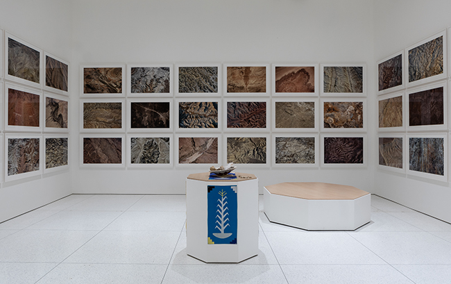 Fazal Sheikh's installation In Place (Four Corners region, Utah, Arizona, New Mexico, and Colorado) at the Smart Museum