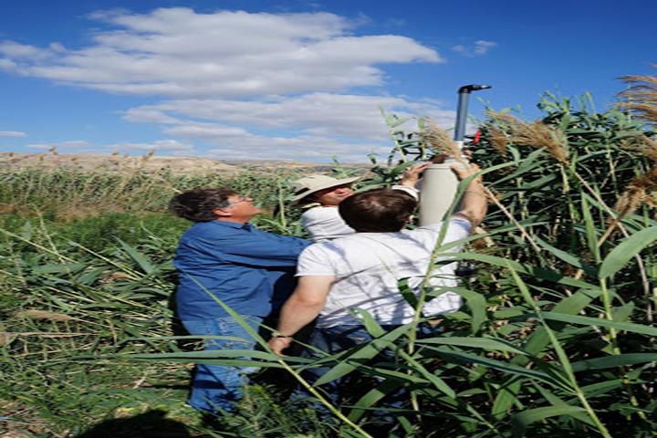 team field work Israel