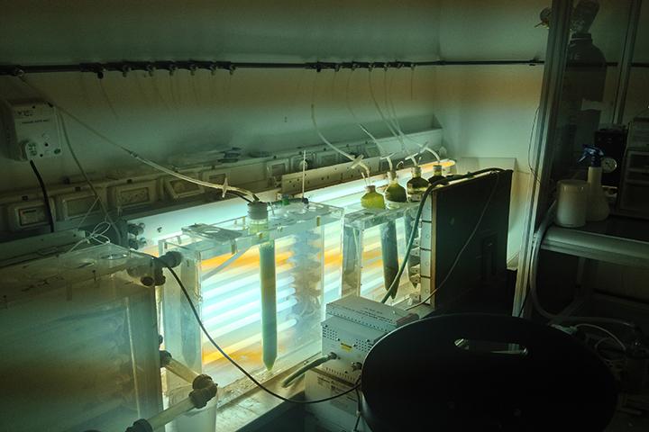indoor water process