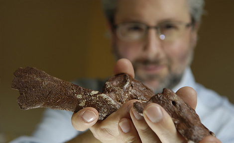 Neil Shubin holds part of a fossil from Tiktaalik roseae