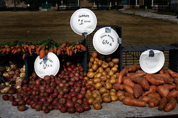 Carrots, potatoes and sweet potatoes