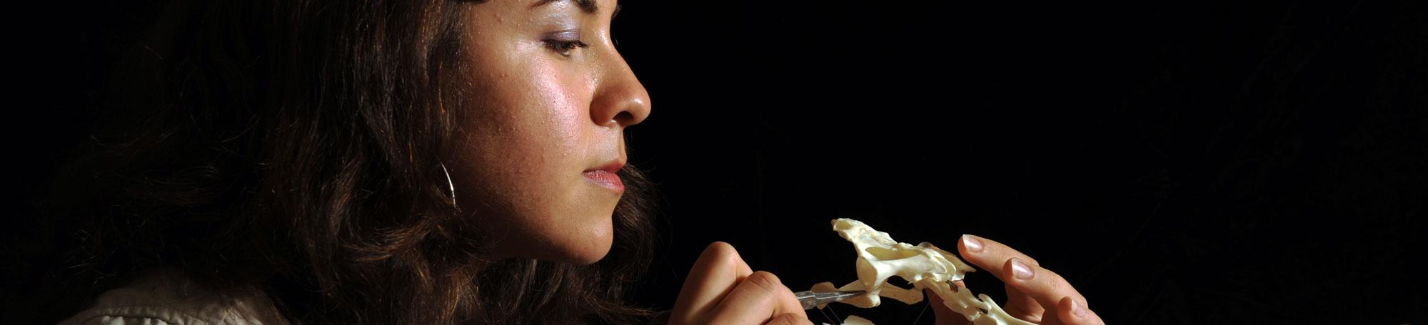 Sara ElShafie
