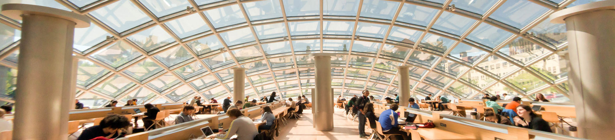 students studying in mansueto library on opening day