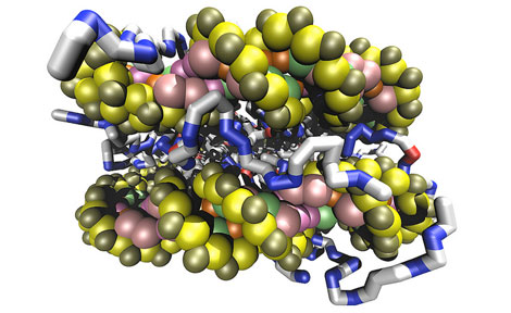 DNA wraps around a histone protein