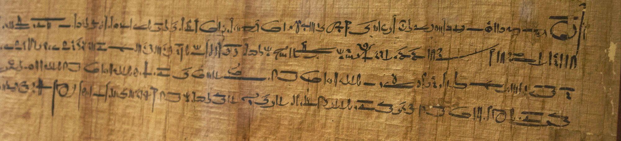 ancient egyptian culture and language relationship