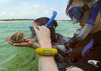 UChicago students scuba dive by Pigeon Creek in the Bahamas