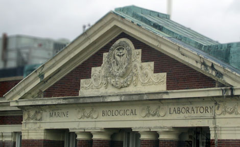 Marine Biological Laboratory in Woods Hole, Mass.