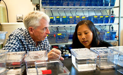 UChicago student Clara Kao with MBL scientist Jonathan Gitlin