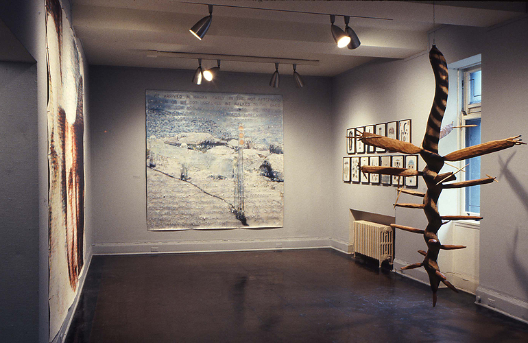 Renaissance Society Art of Texas, Installation View, 1978