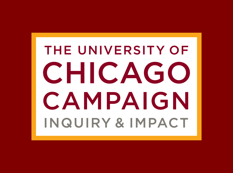 The institute of Chicago Campaign: Inquiry & Impact